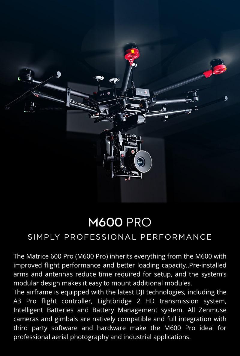 Matrice 600 Pro Flying Platform 1